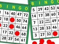 Bingo De Zaagtand zo.
