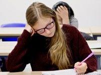 Nederlandse taalles voor gevorderden in Kersenboogerd